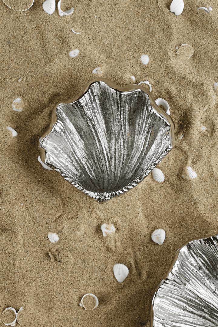 Sea Shell Treasure Decoration S