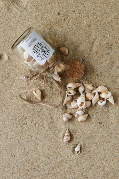 Sandy Shores Mini Bottle Mix